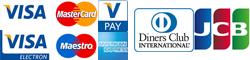 ZANZI - platba kartou . Maestro, MasterCard, VISA, V Pay, American Express, JCB