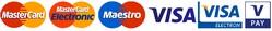 ZANZI - platba kartou . Maestro, MasterCard, VISA, V Pay